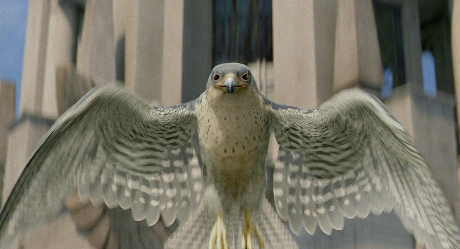 All About Falcon On Tornado Movies List Of Films With A Character Stuart Little 2