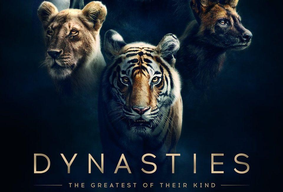 Dynasties - Season 1