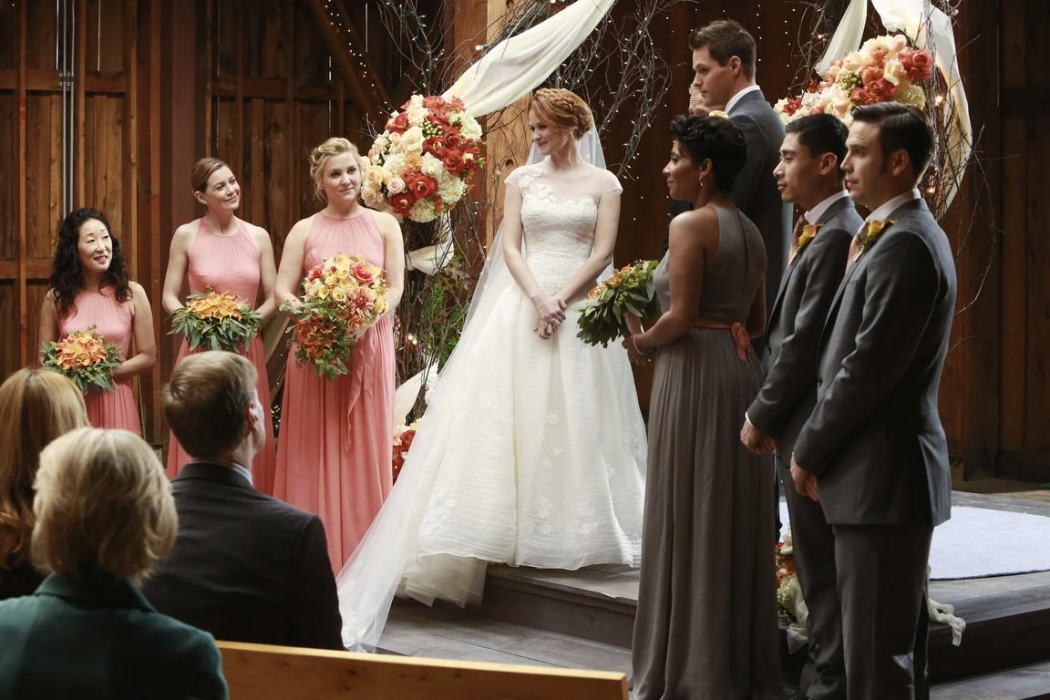 Greys Anatomy - Season 10