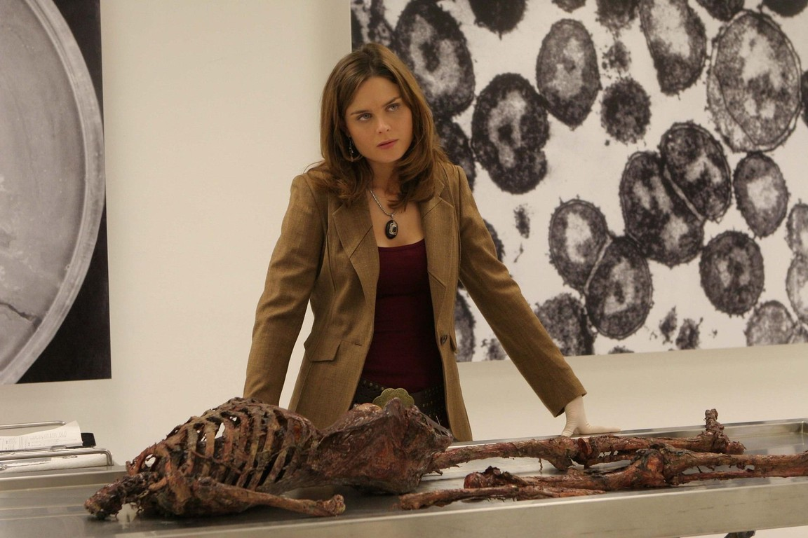 Bones - Season 1 Episode 10: The woman at the airport