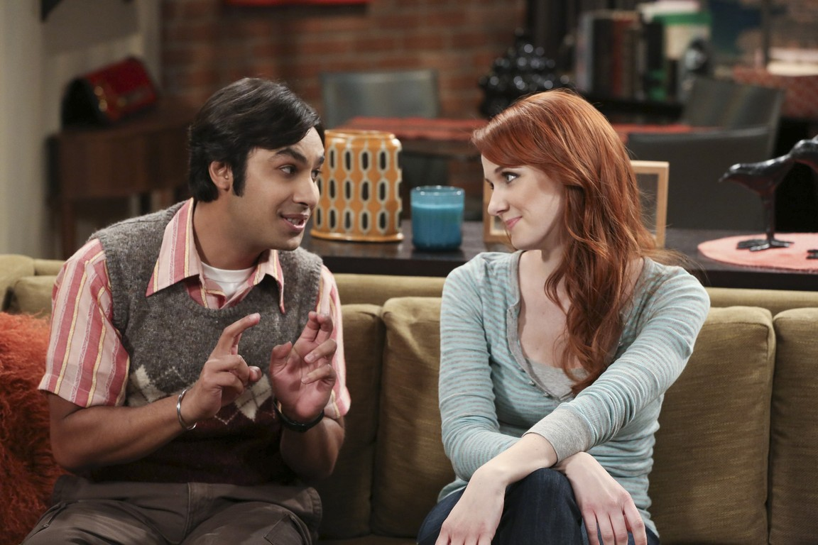 The Big Bang Theory - Season 8 Episode 17: The Colonization Application