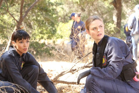 Bones - Season 10 Episode 06: The Lost Love in the Foreign Land
