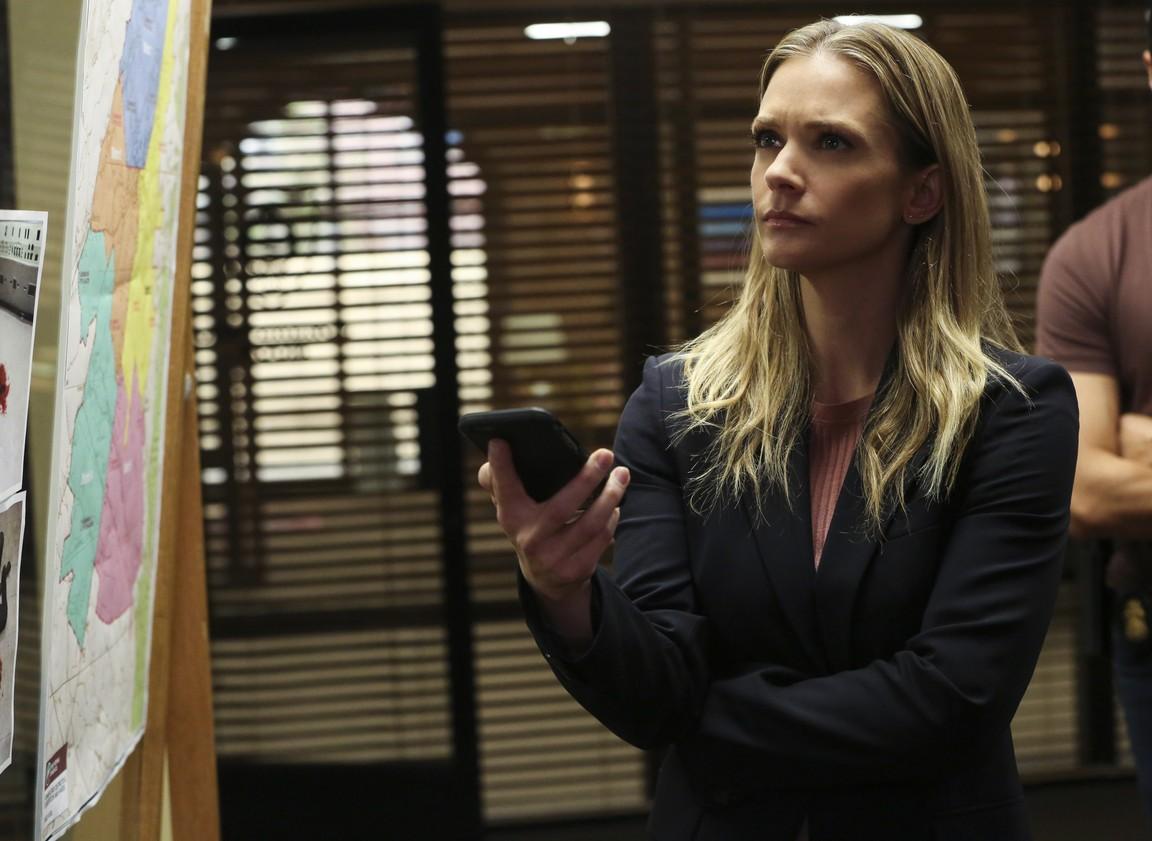 Criminal Minds- Season 13 Episode 21: Mixed Signals