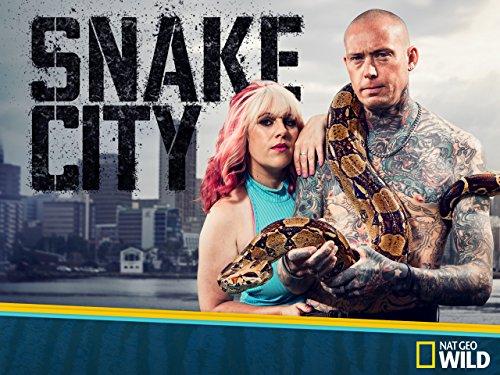 Snake City - Season 2