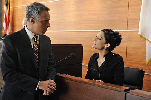 The Good Wife - Season 1 (2009)